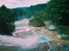 Les merveilleuses chutes d'Agua Azul, un oasis de couleurs