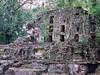magnifique site de Yachilan en pleine jungle!