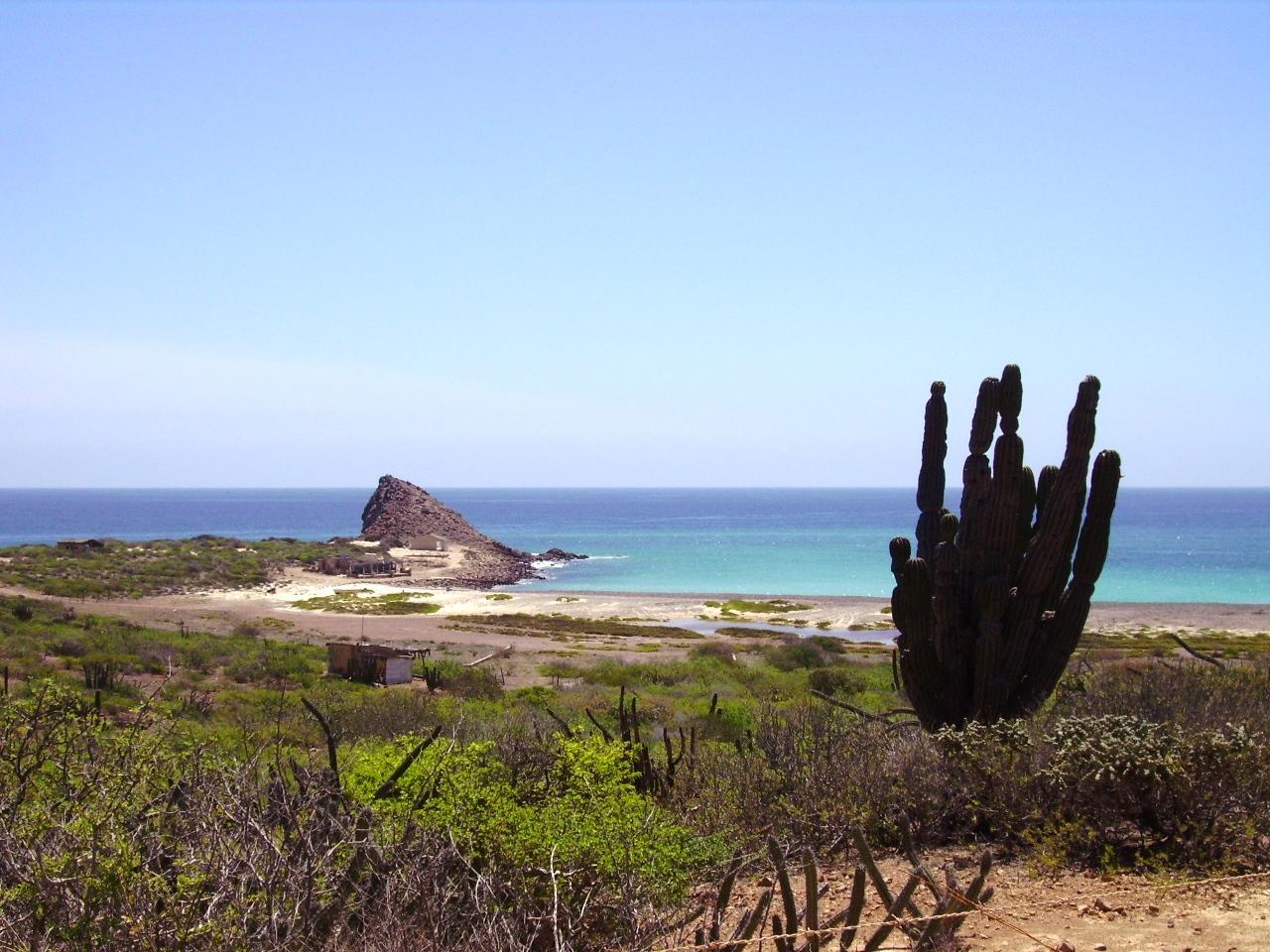 Baja California (Côte est entre la Paz et los Cabos) 2