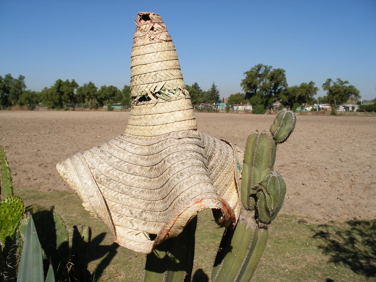 Un Mexicain basané... Son sombréro sur le nez...