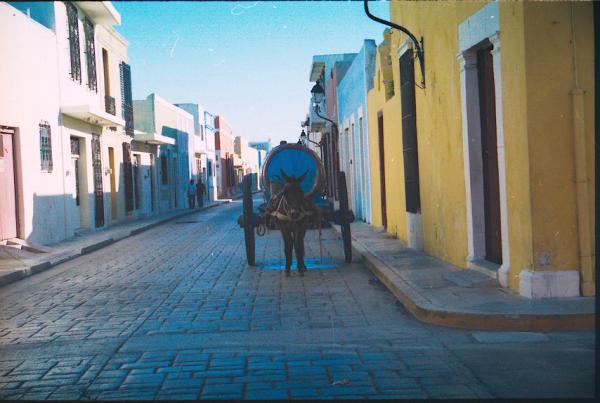 Un âne tirant une citerne d\'eau dans les rues colorées de Campeche.