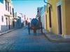 Un âne tirant une citerne d'eau dans les rues colorées de Campeche.