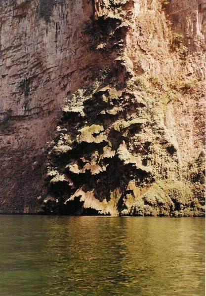 Une cascade au canyon qu\'il nomme Sapin de Noël