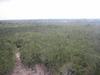 Vue panoramique du site de Coba