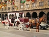 Une très agréable possibilité pour visiter Guadalajara