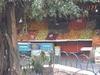 Un des nombreux étalages de fruits au marché de Guadalajara