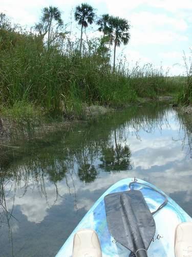 En canoe sur un petit cours d\'eau pres du site de Coba