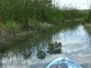 En canoe sur un petit cours d'eau pres du site de Coba