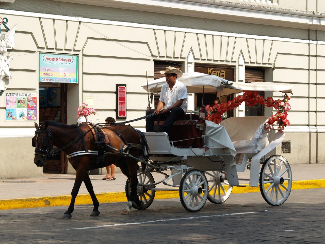 Calèche de la ville de Mérida