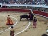 Corrida Mexicaine, une coutume importée d'Espagne (Photo 2)