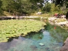Dzibilchaltun Le cenote