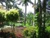 végétation devant un hôtel de la riviera maya