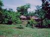 Cabanes au milieu de la fôret tropicale
