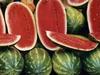 """En plus d'être très apétissantes, les pastèques du Mexique sont énormes, délicieuse et """"croquante"""" à souhait!"""
