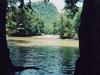 Cours d'eau en plein milieu de la forêt tropicale