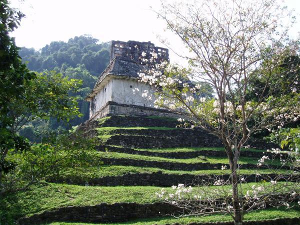 Petit matin à Palenque...