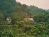 D'autres bâtiments de Palenque