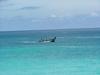 Bateau de pêcheurs naviguant...
