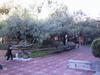 Dans le centre de la ville de Puebla...