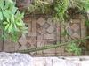 Cachés dans la verdure, de très beaux bas-reliefs.