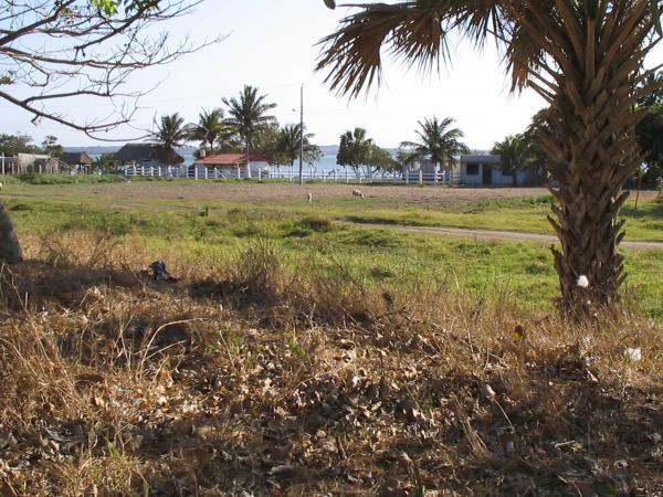 El Nanche, notre ranch entre la plage et le lac